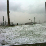Snowy Triangle Park