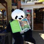 Advertising Panda